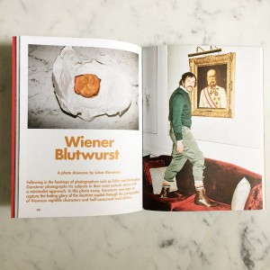 i have just received the 38hours vienna guide which features a selection of my work. get your...