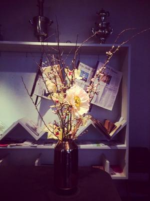Flora ✖️ #Ansari #ANumberofFavoriteThings #Flora #GregorEichinger #EichingerOffices