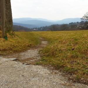 Stoahof. #igersvienna #landscapevie #nature #wien Steinhofgründe