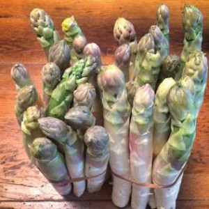 Spargelzeit! #Marchfelder white asparagus