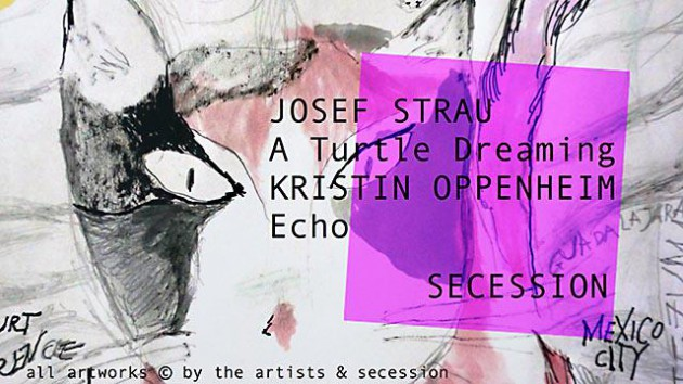 [NEW VID] Josef Strau: A Turtle Dreaming, Kristin Oppenheim: Echo at SECESSION #art #Vienna