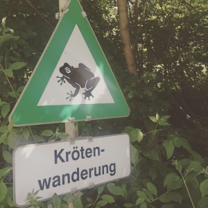 #Wanderkröten Bisamberg