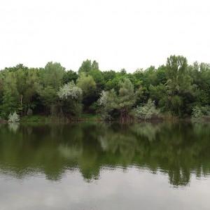 Blauer Teich #wien #vienna Böhmischer Prater