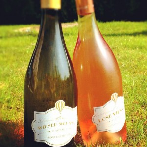 Best friends for this hot sunny weekend ahead!! 😍 #roseviennois#wienermelange#weinundco#summerinthecity#bestservedchilled#ontherocks#vinorama#drinkpink#gemischtersatz#grünerveltliner#palepinkrose#winefromvienna#weinauswien#bisamberg#nussberg