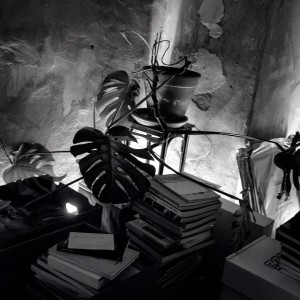Room of books Lia Wolf - photo, design, fashion