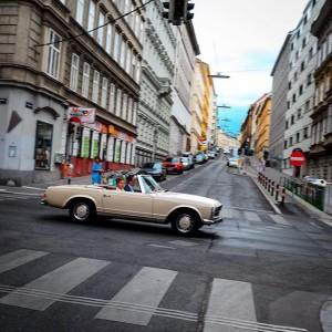Crossing Berggasse #SigmundFreudTour #Vienna #SigmundFreud Berggasse