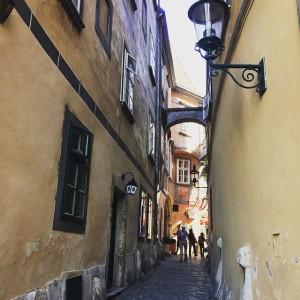 #вид #вена #австрия #город #путешествия #лето #trip #travelling #Austria #view #vienna #wien #summer Restaurant Griechenbeisl