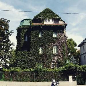 Pratercottage, Böcklinstraße # #polditown #wien #vienna #welovevienna #igersvienna #austria #österreich #leopoldstadt #igersaustria #vienna_city #viennaonly #myaustria #picoftheday #instadaily...