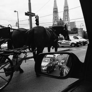 #vienna#aikon#bwvienna#streetbw#documentary#bnw #aikon_at #bw #bnw #blackwhite #blackandwhite #photography #street #streetphoto #streetphotography #people #traffic #followmenow #follow #schwarzweiß#austria#wien #viennablogger