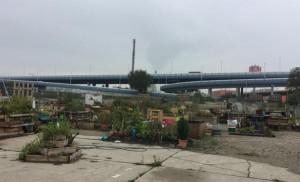 So sieht es übrigens hinter der Redaktion der @WienerZeitung aus #stmarx #urbangarden #industrial #gardening