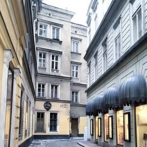 Stadtspaziergang durch den ersten Bezirk. Eine meiner Lieblingsstraßen ist die Kleeblattstraße #street #vienna #streetview #gloomy #white #winter...