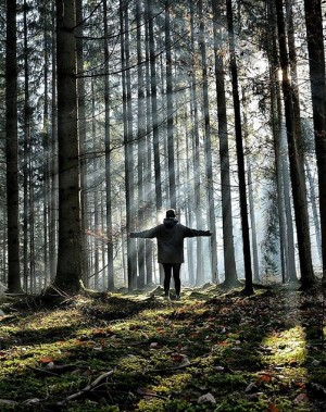 STYRIA | by @republic_of_travellers via @igersaustria.at Steiermark - Das Grüne Herz Österreichs