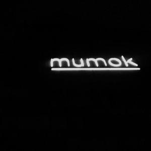 #mumok #mqw #mqwien #neon #neonlights #vienna #igersvienna #igersaustria