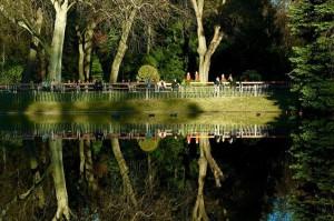 #wien #turkenschanzpark #winter Türkenschanzpark
