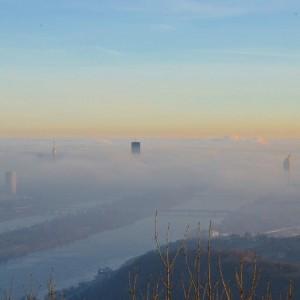 A fog over Vienna today, December 2015 #bestofvienna #ilovevienna #welovevienna #wien #österreich #leopoldsberg #igersvienna #igersaustria #austrianblogger #vienna_city...