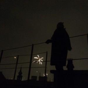 #happy2016 #igersvienna #igersaustria #streetlife #streetscene #fireworks