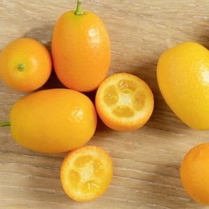Schon unsere aromatischen Bio-Kumquats aus Sizilien probiert?