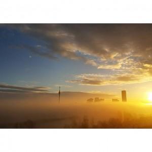 〰 🌞 〰 #wien #sonne #sonnenaufgang #nebel #vienna #sunrise #sunriselovers #ig_vienna #winterinvienna #iloveaustria #welovevienna #at_city #donaucity #donauturm...