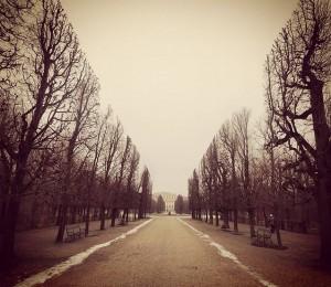 Schõnbrunn. #vienna #Schönbrunn #visitvienna #visitaustria #bestofvienna #bestofaustria #baroque #park #Winter #igersvienna #igersaustria #spaziergang #jogging #fog #sunday #tourism...