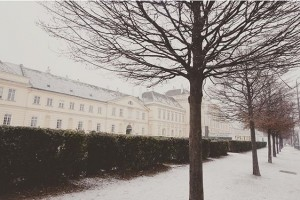 반가웠던 눈.☃ . . #austria #vienna #wien #🇦🇹 #museumquartier #instadaily #newyear #2016 #instatravel #winter #instavsco #ウィーン #旅行...