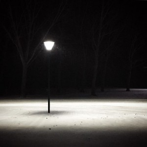 #snow kissing #lantern #light is the best painter #snow #winter #winterwonderland #igersburgenland