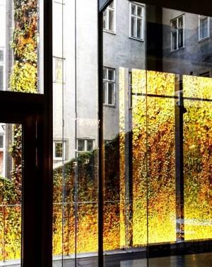 Drinnendraußen #wien#vienna#stilwerk#1020 #leopoldstadt#igersvienna #igersaustria