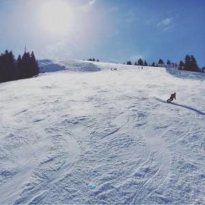 What a day 😍 #hochkoenig #hochkönig #skiamade #salzburgerland #feelthealps #skiandsnowboard #nice #bluebird #justloveit #perfect #conditions #wintertime #nature