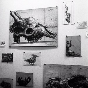 #roa #exhibition #backinthedays @ #inoperable #vienna #austria #coolcat #street #art