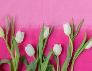 Der Frühling hält Einzug bei MERKUR, mit den Tulpen von @klimeschforjoy 🌷😊 #regram #instamerkur #tulpen #frühling #blumen...