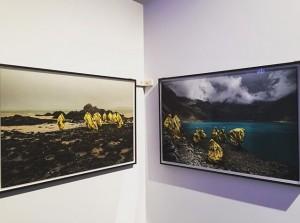 Art Sunday's #artfair #inspiration #sundayvibes #mq #artwalkvintageandart #vienna