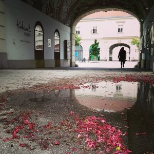 Catching the beauty in little details 💦 #Austria #Vienna #Wien #MuseumsQuartier #MQ #Reflections #Spring #Rain #Puddle MQ...