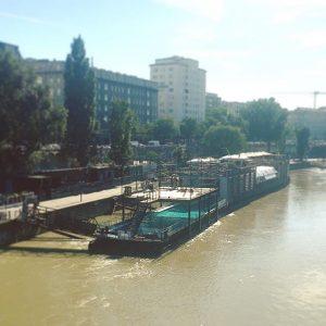Endlich wieder Sommer in der Stadt! #wien #vienna #badeschiff #donaukanal #lände #schwimmen