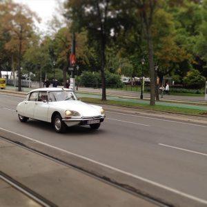 #asundaycarpic #soloparking #citroen #citroën #ds #citroends #absolutelyds #vintage #car #vintagecar #oldtimer #instacar #altekarrenbattle #classiccars #oldtimerswien #carsofvienna #streetsofvienna...
