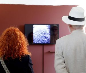 "The ""Stereoscopic slide show from the Whitehouse collection (mosses and field trips)"" by #AndreaBüttner is viewed with..."