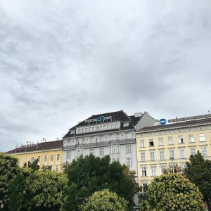 Morning, clouds hovering over our Viennese faces! Will you or will you not pee on us? #viennese...