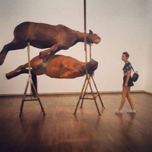 #berlindedebruyckere #berlindedebruyckerethreesculptures #suture #leopoldmuseum #art #artlovers #horses #horsesofinstagram