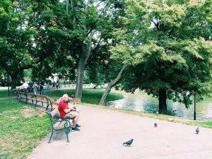 PokémonGO, Schweizer Garten #igersvienna #vienna #viennaonly #vienna_city #viennablogger #welovevienna #myvienna #vienna_austria #igerswien #igersaustria #austria #urban #perspective #urbanphotography...