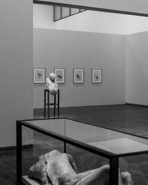 Berlinde de Bruyckere exhibition at Leopold Museum Leopold Museum