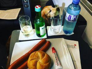Abendessen am Weg zum Wien Termin. #followncm #FranzJoseph ÖBB Railjet