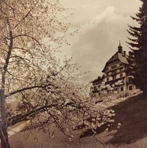 #südbahnhotel #semmering #springawakening #frühlingserwachen #annodomini #1932 #spring #blossom #blossomtree #austria #vintage #hotel #grandhotel #park #historical #project #awakening...