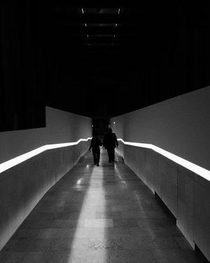 On the way to #instagramNOW @belvederemuseum #vienna #bnw #bw #blackandwhite #blackandwhitephotography #architecture #heimozobernig #igers #igersvienna #igersaustria