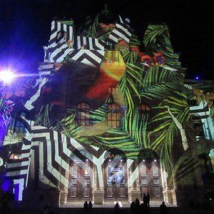 Vienna Calling [ #lichttapete #wienleuchtet #lightshow #jungle ] NhM Naturhistorisches Museum Wien