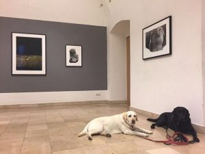 Last day of the Vienna Art Week and the last chance to see Florian's exhibition at the...