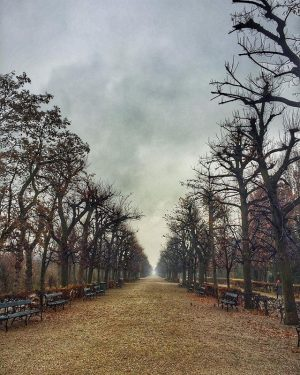 #tmurandan #pustosve #art 🤔 Schloß Schönbrunn