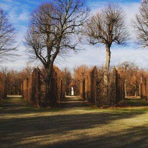 ❤ Schönbrunner Schlosspark #schönbrunn #vienna #austria #imperialvienna #vienna_city #autumn Schloß Schönbrunn