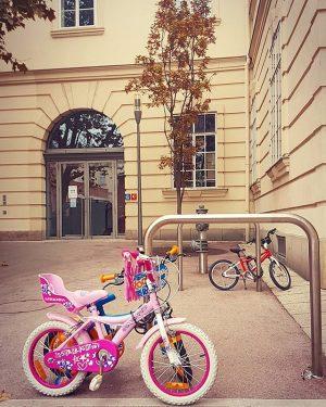 Dünya bu kadar güzel. #igersoftheday #ig_photosentez #fotoğraf #fotografvakti #moment #composition #beautiful #traveller #vs #vsco #vscocam #bike #viyana...