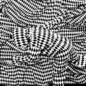 Getarnt ♦♦♦ Camouflaged ♦♦♦ #stephanieklaura #whitecube ⬜ #blackbox ⬛ # collected #6 #schwarzweiß #kunstforumwien #kunst #innerestadt #1ter_bezirk...