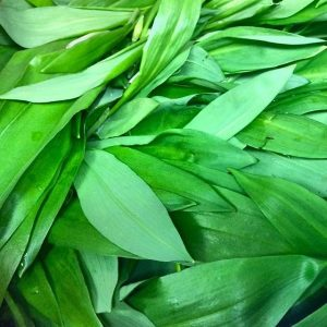 Look what arrived today! Who else loves wild spring garlic? Check out the new seasonal menu on...