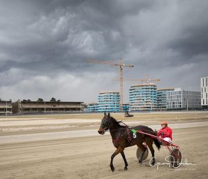 Schwarze Wolken über der Kriau #igersvienna #igersaustria #vienna #welovevienna #loveaustria #visitaustria #pferde #horses #sky Trabrennbahn Krieau