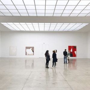 svenja deininger • echo of a mirror fragment / angelika loderer Vienna Secession